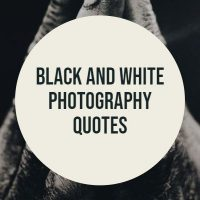 black and white photo quotes