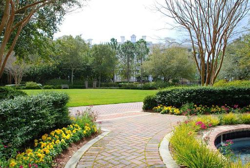 professional lawn maintenance services
