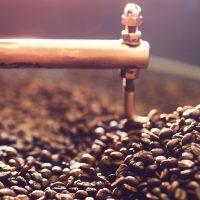 fresh roasted coffee beans singapore